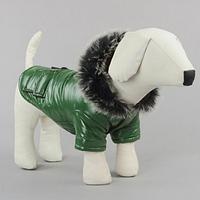 Зеленая зимняя куртка для маленьких собак, размер S