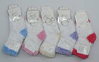 Носочки махровые ,теплые (1)год