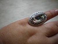 Серебряное кольцо с галиотисом. 18 размера.Филигрань.
