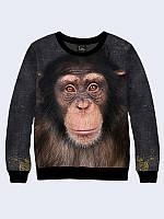 Світшот жіночий 3D Мавпочка/Свитшот Шимпанзе фото