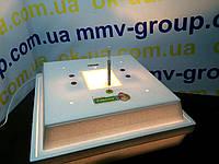 Инкубатор Рябушка-2   70 яиц Аналоговая
