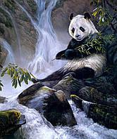 "Раскраска по цифрам ""Панда с бамбуком Худ Лаура Марк-Файнберг """