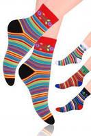 женские хлопковые носки steven