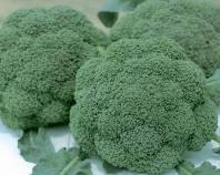 Семена капусты брокколи ранний гибрид Баро Стар F1, NongWoo Bio (Корея), 2500 семян