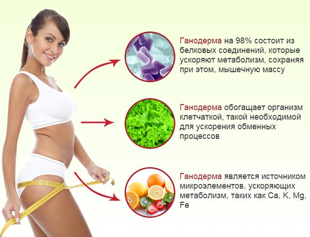 Как ускорить обмен веществ в организме и похудеть отзывы