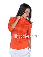 Блуза классическая , фото 1