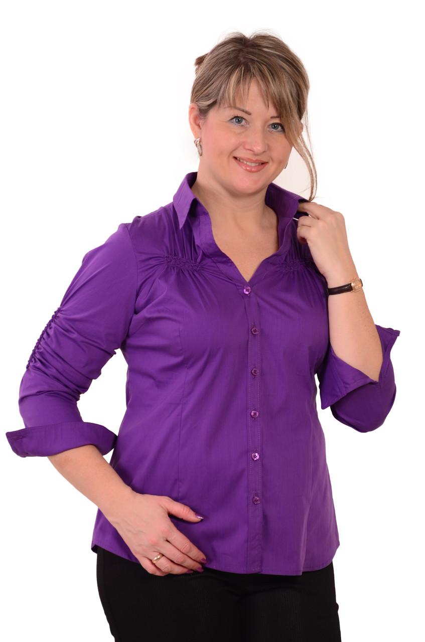 Блузки Женские Купить В Спб