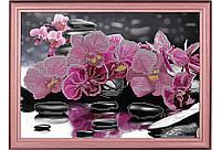 """Схема для вышивки бисером или крестиком цветы, """"Розовая орхидея"""""""