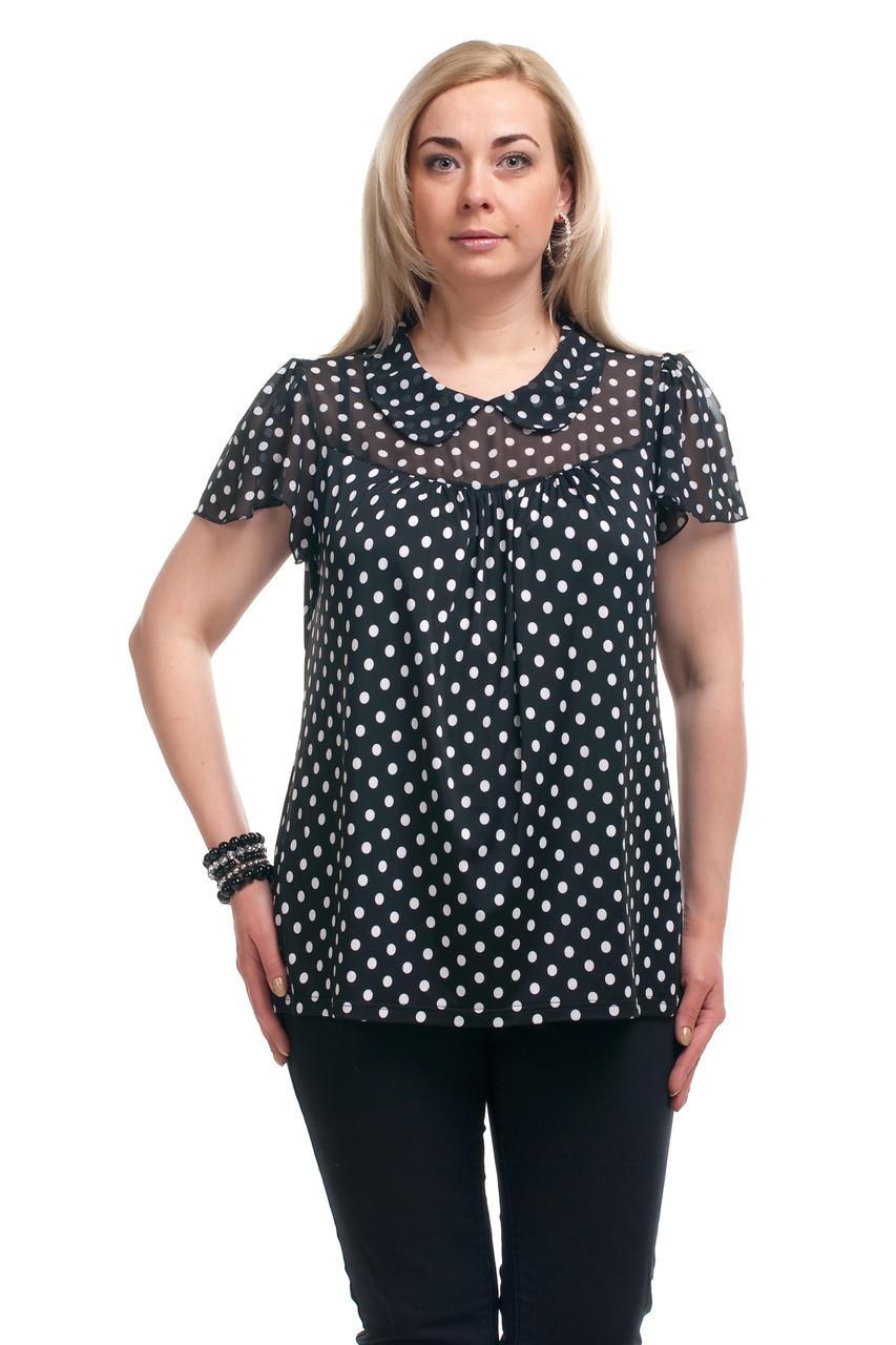 Женская блузка большого размера купить