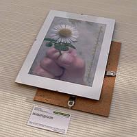 Антирама 400х500мм антирамка безбагетная клямерная рама рамка-клип
