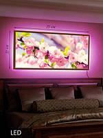 Картина с LED подсветкой Весенние цветы