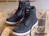 Зимние мужские ботинки кожанные на меху Shamrock Rhino Black
