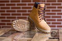 Зимние мужские ботинки кожанные на меху Shamrock Rhino Yellow