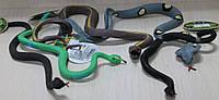 Игрушка-антистресс Змеи