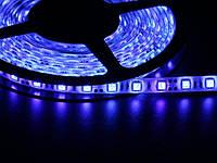 Светодиодная лента 5050  60 LED синяя 10.0-12.5 Lm/LED влагозащищена IP65