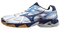 Кроссовки волейбольные MIZUNO WAVE BOLT 4 V1GA1560-24