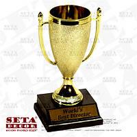 Кубок сувенирный Worlds Best Director ( Лучший в мире директор)