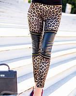 Яркие леггинсы с леопардовым принтом+Эко кожа