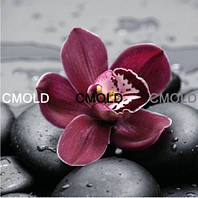 """Картина алмазной техники """"Цветок орхидеи на камнях"""""""