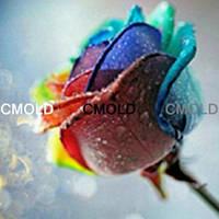 "Алмазная вышивка ""Роза разноцветная"" (набор для творчества)"