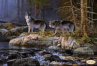 """Рисунок на ткани для вышивания бисером """"У реки. Волки"""""""