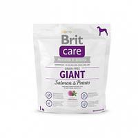 Корм для собак Brit Care GF Giant Salmon & Potato 1 кг, лосось, для собак весом от 45 кг