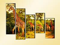 """Модульная картина """"Жирафы"""" фотопечать на холсте"""