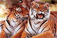 """Алмазная вышивка """"Два тигра"""""""