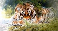 """Алмазная вышивка """"Тигр отдыхает"""""""