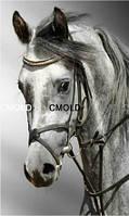 """Алмазная вышивка """"Лошадь"""""""