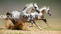 """Алмазная вышивка """"Лошади"""" в пустели"""""""