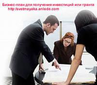Бизнес-план готовый для получения гранта и инвестиций