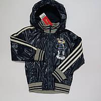 Куртка ветровка для мальчиков Bobbogi 5-6 лет