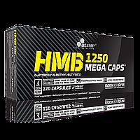 Стимуляторы роста мышечной массы Olimp HMB 1250 Mega Caps 120 caps