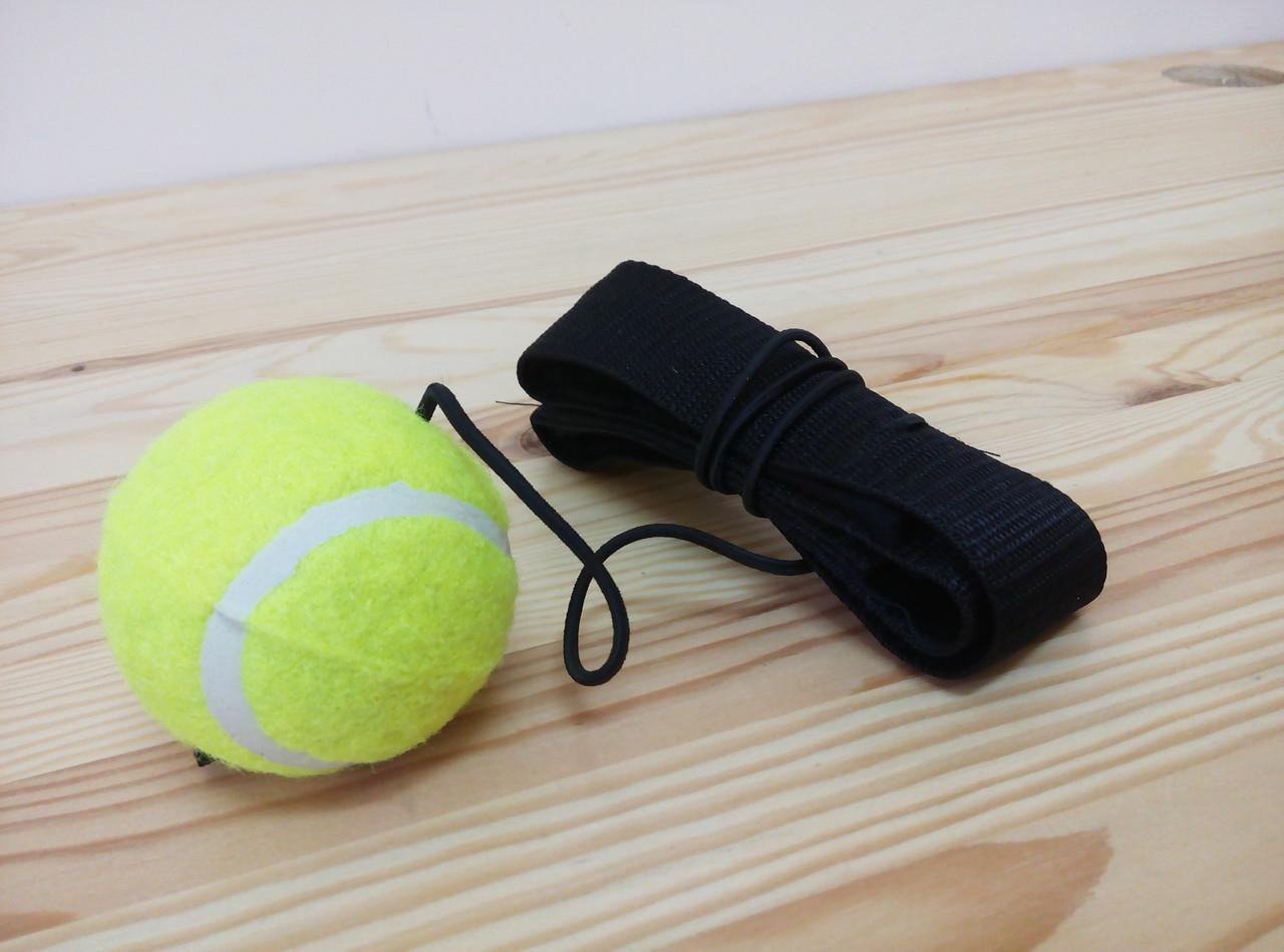Теннисный мяч в боксе мяч на резинке видео 40