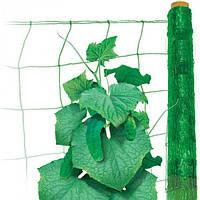 Сетка пластиковая для огурцов 1,7*10 м (15*17см)