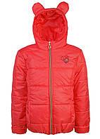 Курточка на весну-осень для девочки
