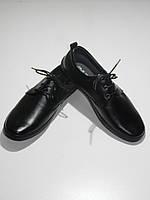 Туфли мужские повседневные на шнурках Razil D-10113-R58 демисезон размеры 39, 41, 43