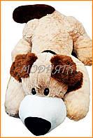 Мягкая плюшевая собака 50 см | Мягкие игрушки собачки