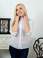 Блуза женская  шифон белая, фото 1