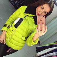 Модная куртка плащевка (арт. 235808622)