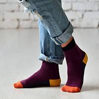Разноцветные классические женские носки ТМ Duna