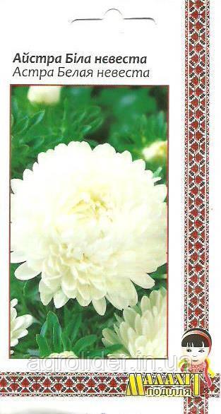 Семена цветов Астра невеста Белая 0.5 г (Малахiт Подiлля)