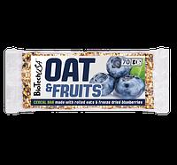 Заменитель питания BioTech OAT and Fruits (70 g)
