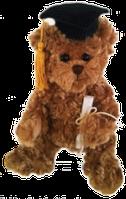 Мягкая игрушка Bukowski PROFESSOR TEDDY, 25cm