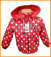 Куртки для девочек осень весна Минни Маус | Детские куртки недорого