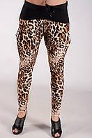 Брюки-галифе с леопардовым принтом