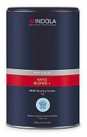 Компактная Обесцвечивающая Пудра Indola Profession RAPID BLOD+ BLUE, 500 гр