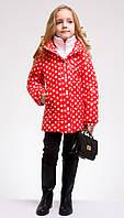 Детская демисезонная куртка  красная в горох