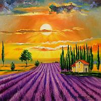 «Лавандовое поле на закате» картина маслом